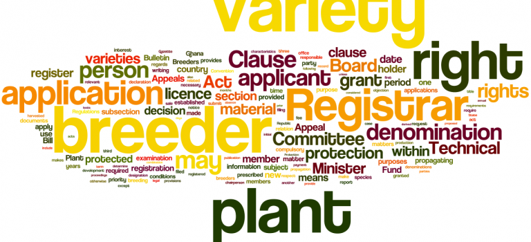 Word Cloud: The Plant Breeders' Bill of Ghana (2013)